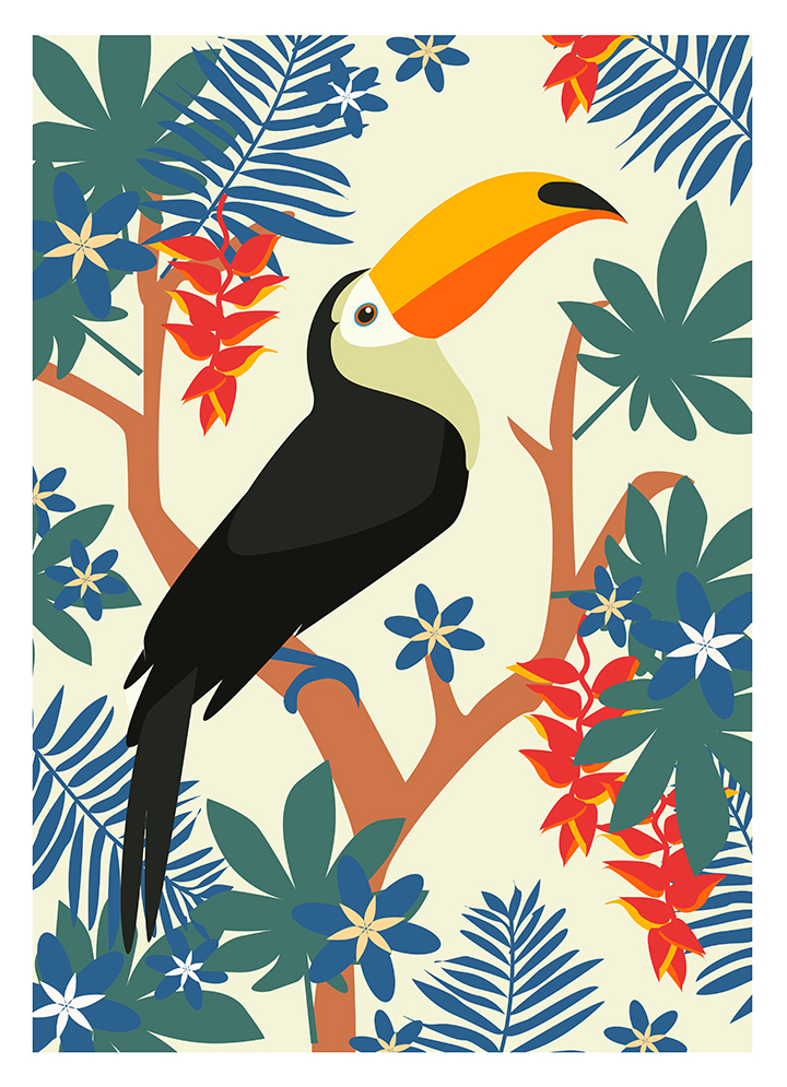 toucan pattern, animal, textile, design by Olivia Linn